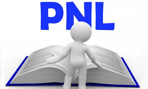 PNL - O que �?